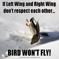 If Left Wing and Right Wing don't respect each other...BIRD WON'T FLY