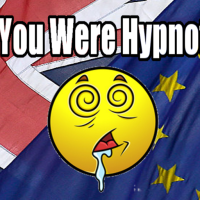 While You Were Hypnotised by the EU ReferendumB...