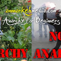 Anarchy For Beginners
