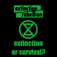 EXTINCTION OR SURVIVAL? Imagining a Future for our Scorched Planet.